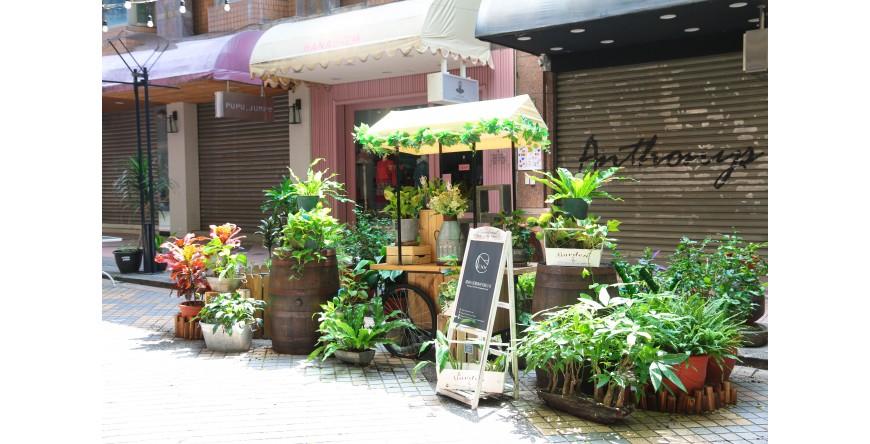 攤車佈置綠意為精明一街商圈打造輕鬆活耀氛圍