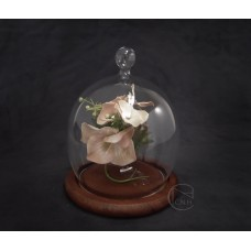 玻璃+木底座(小提把)