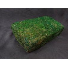 材料-水草