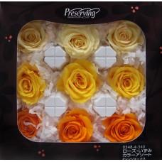 盒裝不凋花-大地農園 玫瑰(漸層黃)