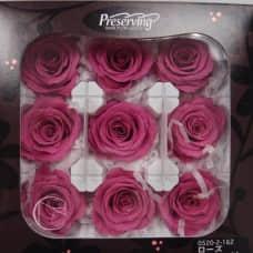 盒裝不凋花-大地農園 玫瑰(紫)