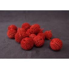 乾燥果實-日本大地農園 乾燥Mutamba Nuts(紅)