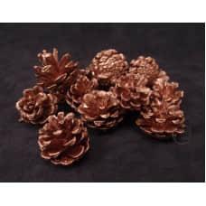 乾燥果實-日本TOKA 乾燥小松花(玫瑰金)