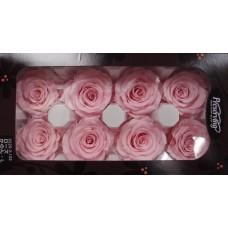 盒裝不凋花-大地農園 玫瑰 Rose Kanon L8輪(粉)