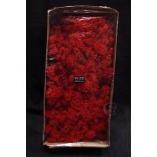 材料-Moss 馴鹿水草(紅-157)