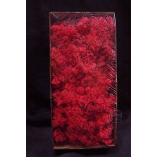 材料-Moss 馴鹿水草(櫻桃紅-169)