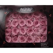 盒裝不凋花-大地農園 玫瑰(粉藕)