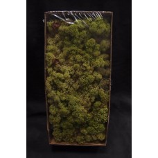 材料-Moss 馴鹿水草(稻草綠-164)