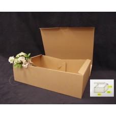 包裝-ECO Z-9紙盒