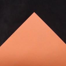 包裝-1617包裝紙(亮橘)