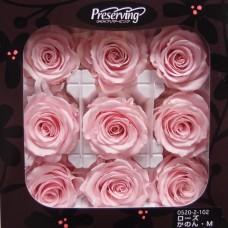 盒裝不凋花-大地農園 玫瑰(粉)