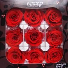 盒裝不凋花-大地農園 玫瑰Rose KanonM9輪(紅)