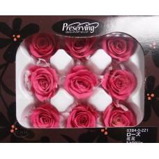 盒裝不凋花-大地農園Rose mini 9輪 Strawberry