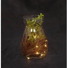 玻璃花器+LED燈