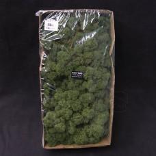 材料-Moss 馴鹿水草(深綠-154)