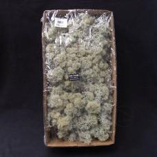 材料-Moss 馴鹿水草(灰白色-175)