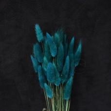 乾燥花-大地農園Lagurus兔尾草(深綠)