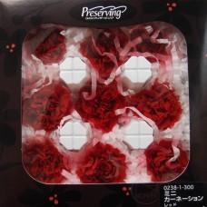 盒裝不凋花-大地農園 康乃馨Mini Carnation9輪(紅)