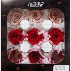 盒裝不凋花-大地農園 Rose Izumi 9輪(紅色組合)