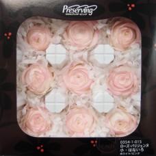 盒裝不凋花-大地農園 Rose Parisienne S Hanairo9輪(淡紫)