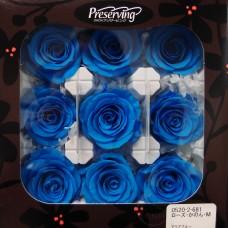 盒裝不凋花-大地農園Rose Kanon M9輪(土耳其藍)