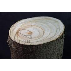 木段 擺飾