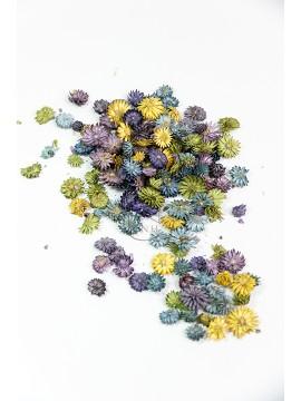 大地農園 乾燥花起絨花綜合紫
