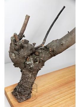 花器 長板樹枝