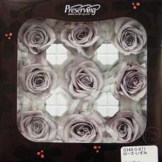 盒裝不凋花-大地農園 玫瑰Rose lzumi9輪Pearl Gray