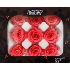 盒裝不凋花-大地農園Rose mini 9輪 Candy Pink