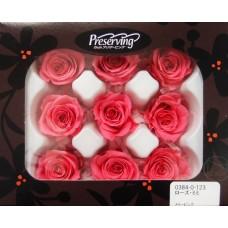 盒裝不凋花-大地農園Rose mini 9輪 Mary Pink