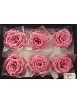 盒裝不凋花-大地農園 Full Bloom Rose L6輪Crystal Pink