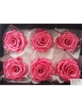 盒裝不凋花-大地農園 Full Bloom Rose L6輪Princess Pink
