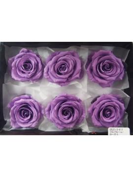 盒裝不凋花-大地農園 Full Bloom Rose L6輪Lavender