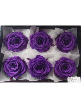 盒裝不凋花-大地農園 Full Bloom Rose L6輪Grape