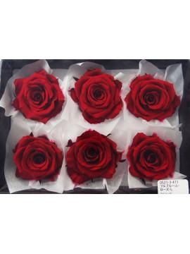 盒裝不凋花-大地農園 Full Bloom Rose L6輪Wine Red