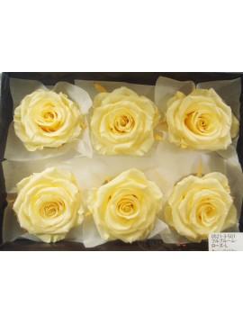 盒裝不凋花-大地農園 Full Bloom Rose L6輪Morning Yellow