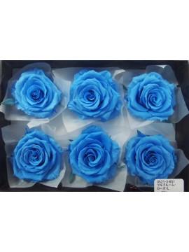 盒裝不凋花-大地農園 Full Bloom Rose L6輪Soda Blue