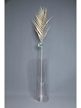 人造葉 FG005213-013 棕櫚葉 米黃