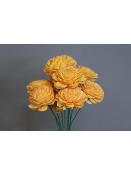 乾燥花 蓪草 太陽玫瑰 小 亮橘色