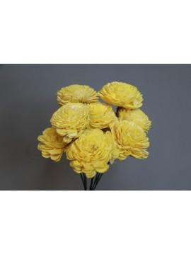 乾燥花 蓪草 太陽玫瑰 大 亮黃色