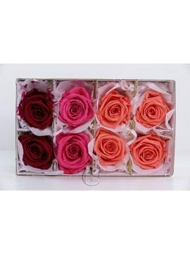 不凋花 Florever FL301-109 Mediana Rose 8輪 Red Mix