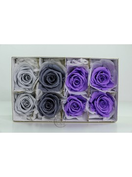 不凋花 Florever FL301-111 Mediana Rose 8輪 Blue Purple Mix