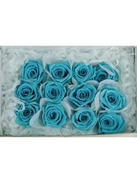 不凋花 FL050-72 Baby Rose 12輪