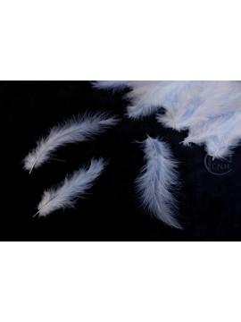 特價品 羽毛 藍 約100根