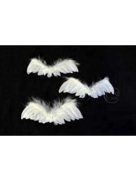 特價品 羽翼 白 3入