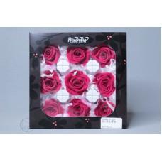 盒裝不凋花-不凋花 Rose Izumi 9輪 TR
