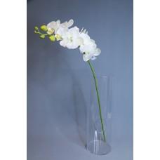 人造花 8朵中枝蝴蝶蘭 白綠