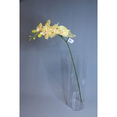 人造花 8朵中枝蝴蝶蘭 黃