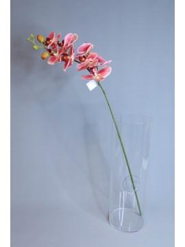 人造花 8朵中枝蝴蝶蘭 紅